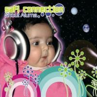 Purchase Safi Connection - Shout Aluma