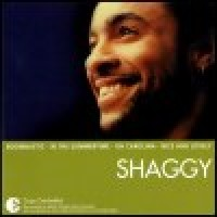 Purchase Shaggy - Essential