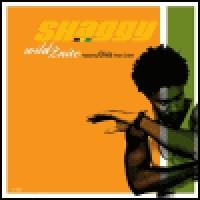 Purchase Shaggy - Wild 2nite (CDS)