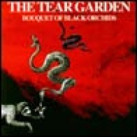 Purchase The Tear Garden - Bouquet Of Black Orchids