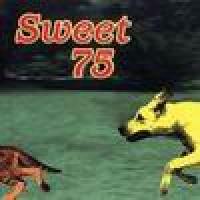 Purchase Krist Novoselic - Sweet 75