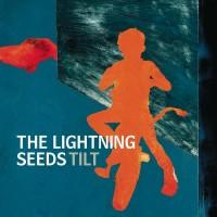 Purchase Lightning Seeds - Tilt