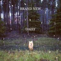 Purchase Brand New - Daisy