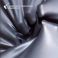 Purchase Frankie Goes to Hollywood - Maximum Joy CD2