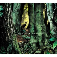 Purchase David Sylvian - Manafon