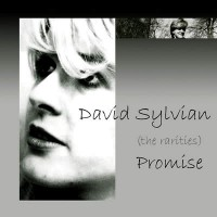 Purchase David Sylvian - Promise CD1