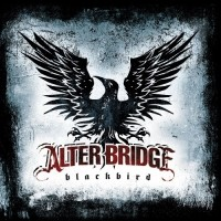 Purchase Alter Bridge - Blackbird