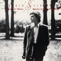 Purchase David Sylvian - Brilliant Trees