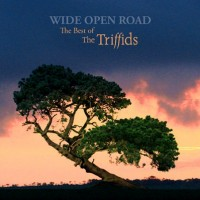 Purchase The Triffids - Wide Open Road: The Best Of