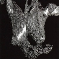 Purchase Oceansize - Self Preserved While The Bodies Float Up