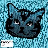 Purchase Brandnew - Blue