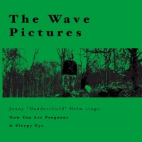 Purchase The Wave Pictures - Jonny Helm Sings