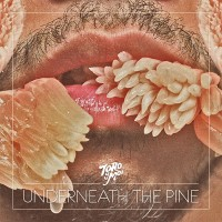 Purchase Toro Y Moi - Underneath the Pine