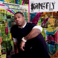 Purchase Swingfly - Awesomeness