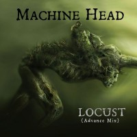 Purchase Machine Head - Locust (CDS)