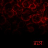 Purchase OSI - Blood (Special Edition) CD2
