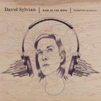 Purchase David Sylvian - Died In The Wool CD2