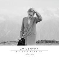 Purchase David Sylvian - A Victim Of Stars: 1982-2012 CD2