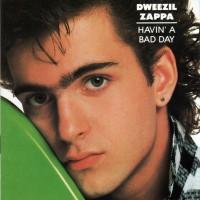 Purchase Dweezil Zappa - Havin' a Bad Day