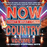Purchase VA - Now That's What I Call Country, Vol. 5