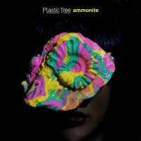Purchase Plastic Tree - Ammonite