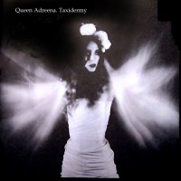 Purchase Queen Adreena - Taxidermy