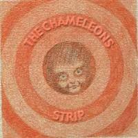 Purchase The Chameleons - Strip