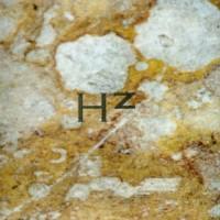 Purchase Main - Hz CD2