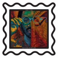 Purchase Toro Y Moi - Anything In Return