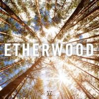 Purchase Etherwood - Etherwood