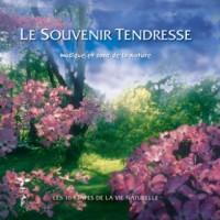 Purchase nicolas jeandot - Le Souvenir Tendresse