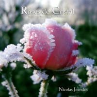 Purchase nicolas jeandot - Roses De Cristal