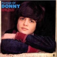 Purchase Donny Osmond - Portrait Of Donny (Vinyl)