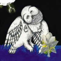Purchase Songs: Ohia - The Magnolia Electric Co. (10Th Anniversary Deluxe Edition) CD2