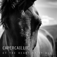 Purchase Capercaillie - At The Heart Of It All