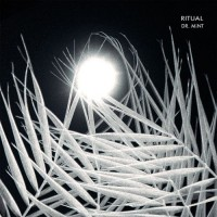 Purchase Dr. Mint - Ritual