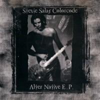 Purchase Stevie Salas - Alter Native E.P.