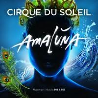 Purchase Cirque Du Soleil - Amaluna