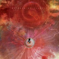 Purchase Animals As Leaders - The Joy of Motion