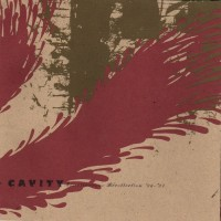 Purchase Cavity - Miscellaneous Recollection '92-'97