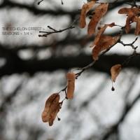 Purchase The Echelon Effect - Seasons Part 3