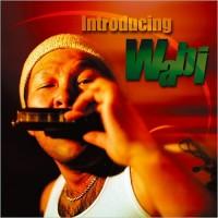 Purchase Seiji Wabi Yuguchi - Introducing Wabi