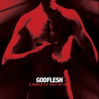 Purchase Godflesh - World Lit Only By Fire
