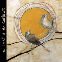 Purchase Brett Kull - The Last Of The Curlews