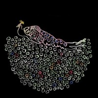 Purchase Iron & Wine - Morning Becomes Eclectic