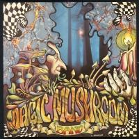 Purchase Magic Mushroom Band - Re-Hash
