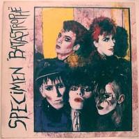 Purchase Specimen - Batastrophe (Vinyl)