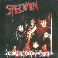 Purchase Specimen - The Beauty Of Poisin (VLS)
