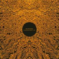 Purchase Bonobo - Flashlight (EP)