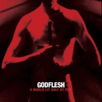 Purchase Godflesh - A World Lit Only By Fire (Deluxe Edition)